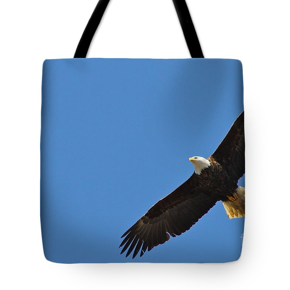 Eagle Tote Bag featuring the photograph Freedom by Rick Monyahan