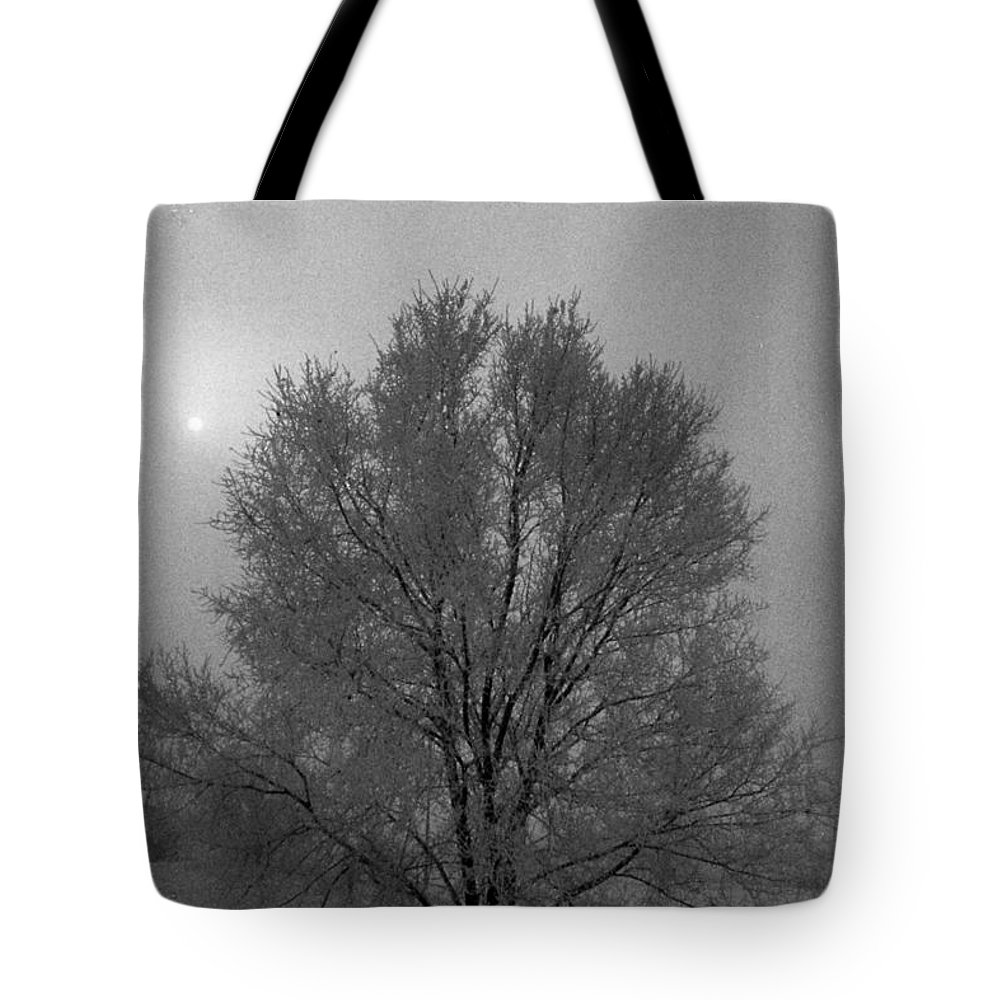 Fog Tote Bag featuring the photograph Freezing Fog by Mike Wheeler