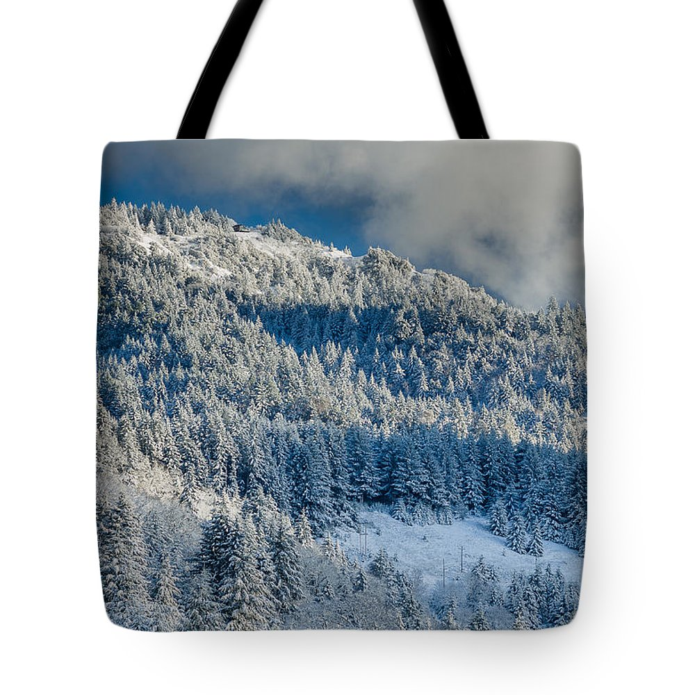 Dramatic Sky Tote Bag featuring the photograph Fresh Snow On The Mountain by Greg Nyquist
