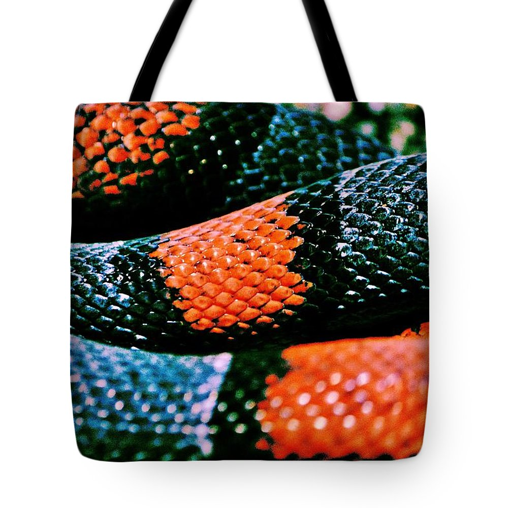 Milk Snake Tote Bag featuring the photograph Friend Of Jack by Benjamin Yeager