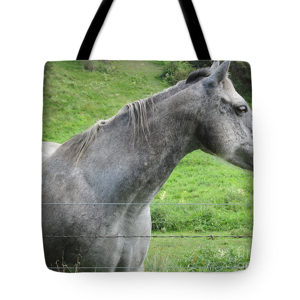 Horse Tote Bag featuring the photograph Friendly Gray Horse by Tina M Wenger