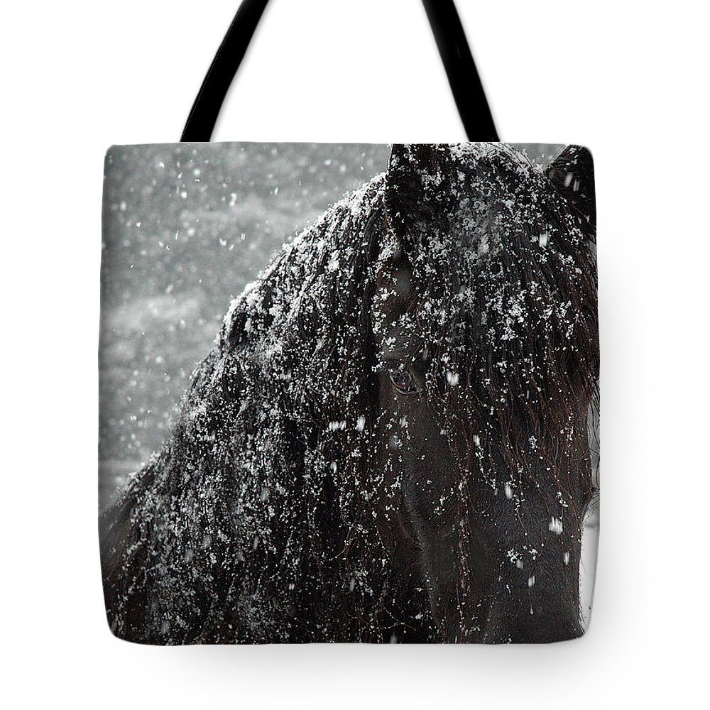 Horses Tote Bag featuring the photograph Friesian Snow by Fran J Scott