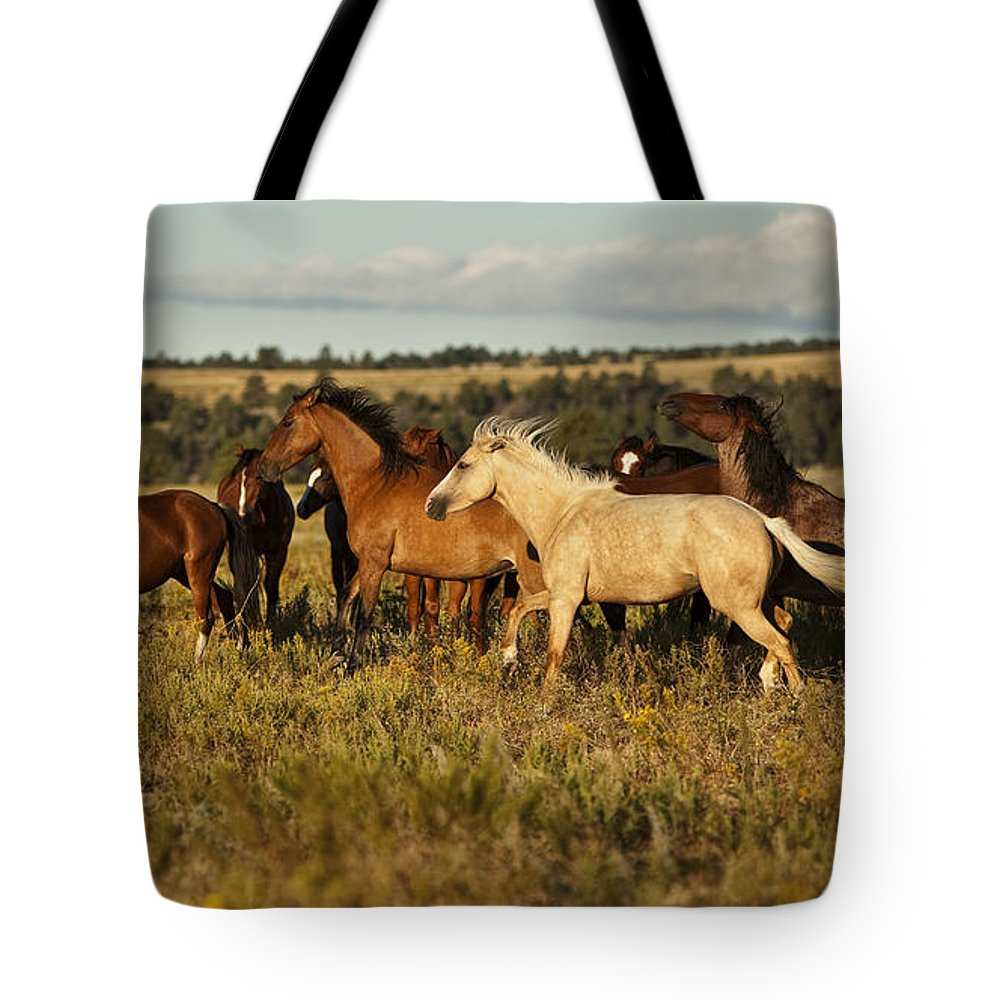 Horse Tote Bag featuring the photograph Frisky by Jack Milchanowski
