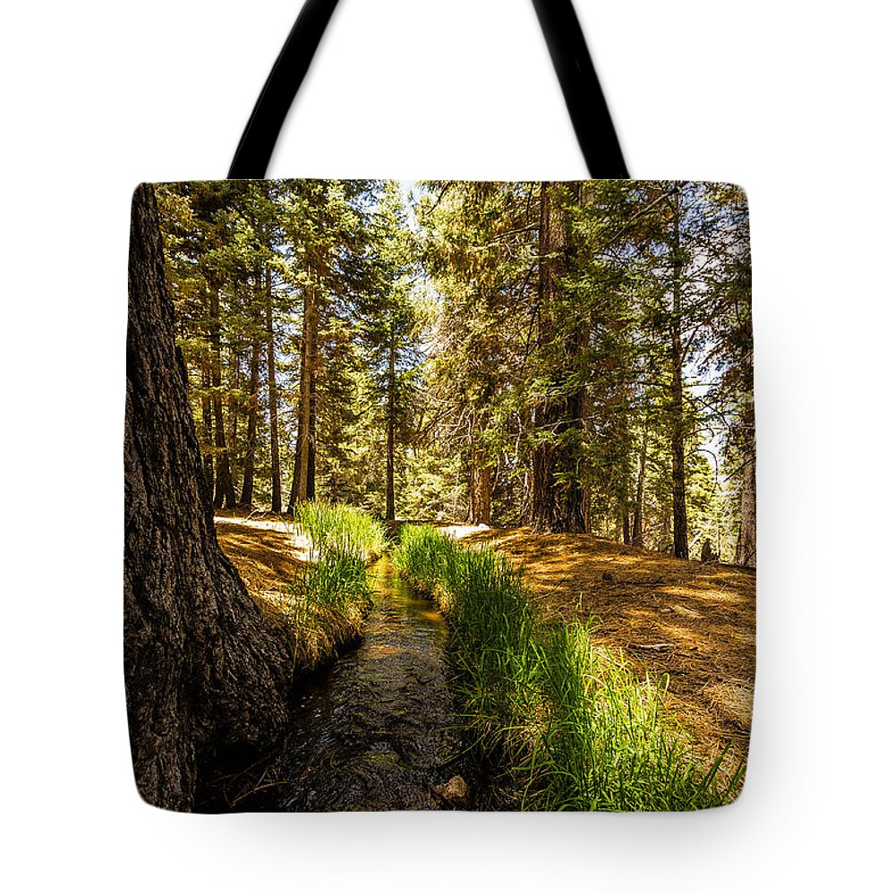 Big Bear Photography Tote Bag featuring the photograph Frog Creek by Dave Muesbeck
