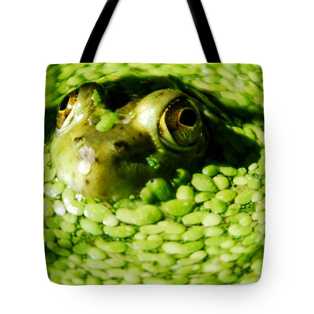 Green Algae Tote Bag featuring the photograph Frog Eye's by Optical Playground By MP Ray