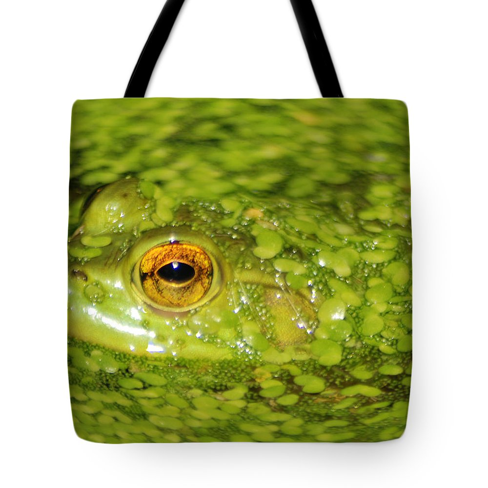 Green Algae Tote Bag featuring the photograph Frog In Single Celled Algae by Optical Playground By MP Ray