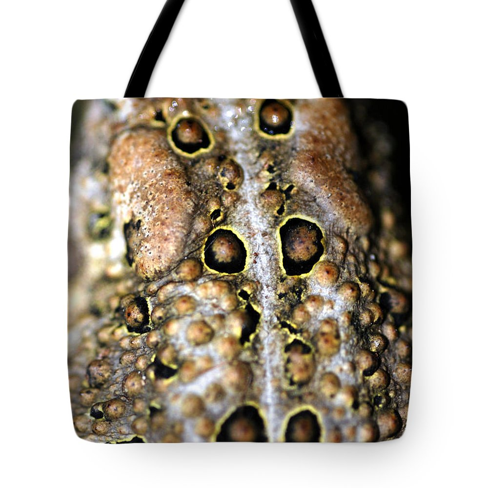 Tote Bag featuring the photograph Frogs Back by Optical Playground By MP Ray