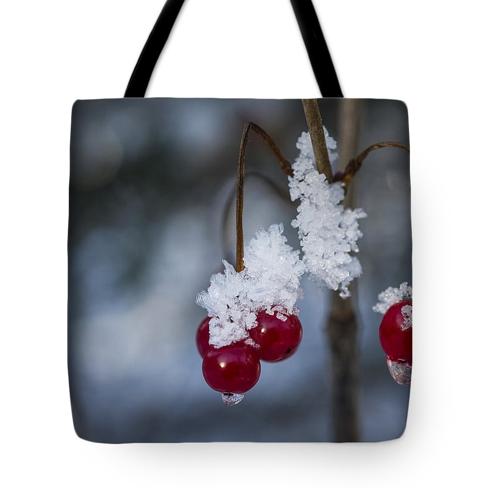 Ice Tote Bag featuring the photograph Frost Berries by Ted Raynor