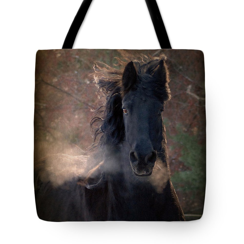 Horses Tote Bag featuring the photograph Frost by Fran J Scott