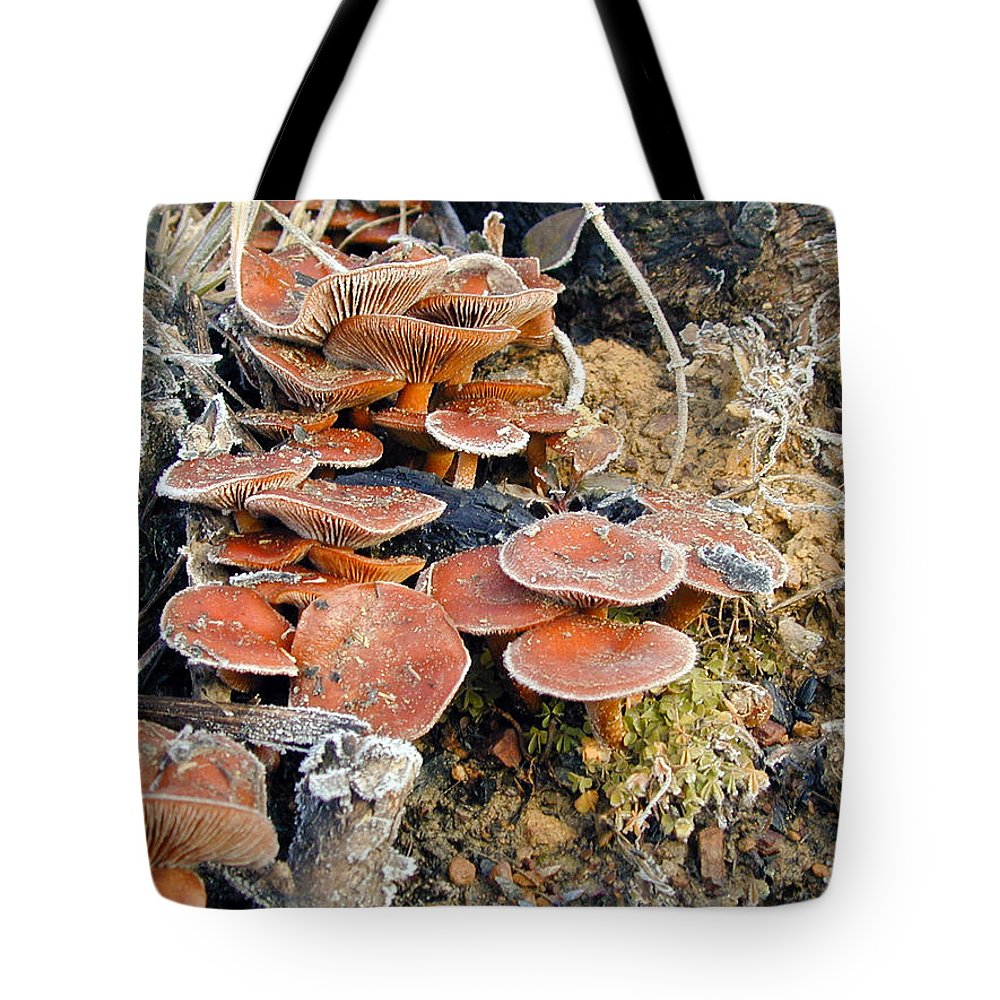 Frosted Tote Bag featuring the photograph Frosted Cascading Mushrooms by Douglas Barnett