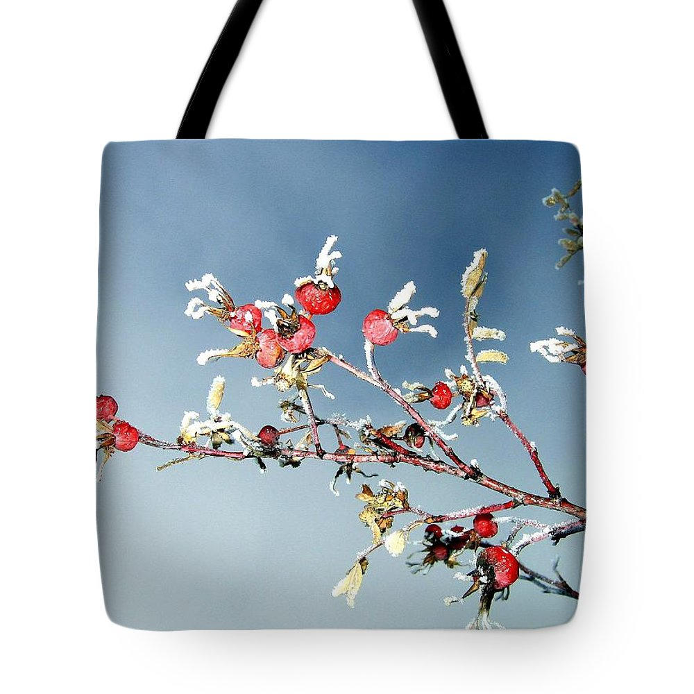 Frost Tote Bag featuring the photograph Frosty Morn by Will Borden