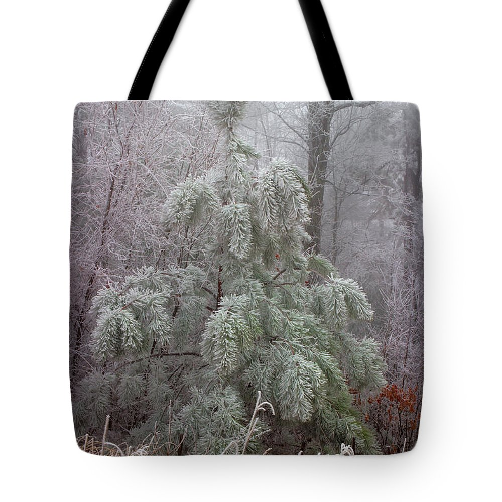 Frosted Pine Tote Bag featuring the photograph Frosty Pine by Michael Eingle