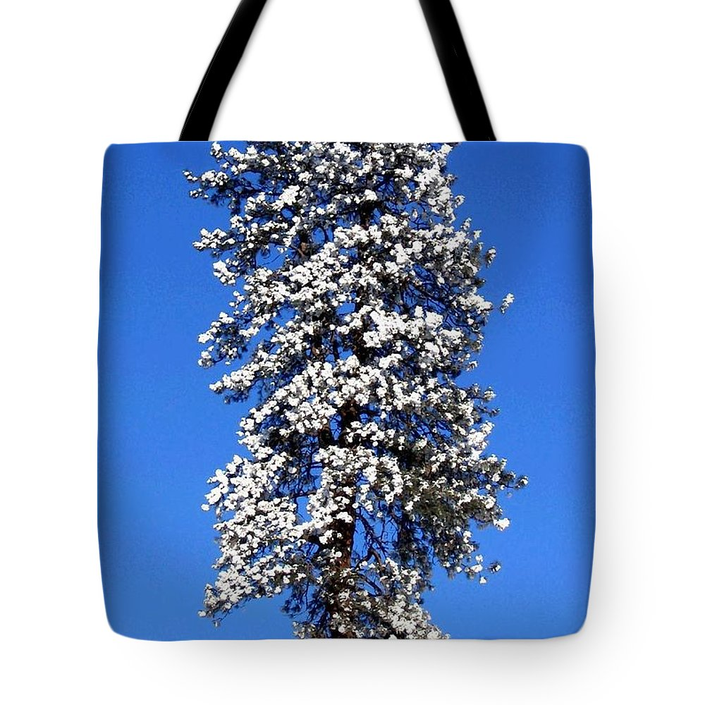 Frost Tote Bag featuring the photograph Frosty Pine by Will Borden