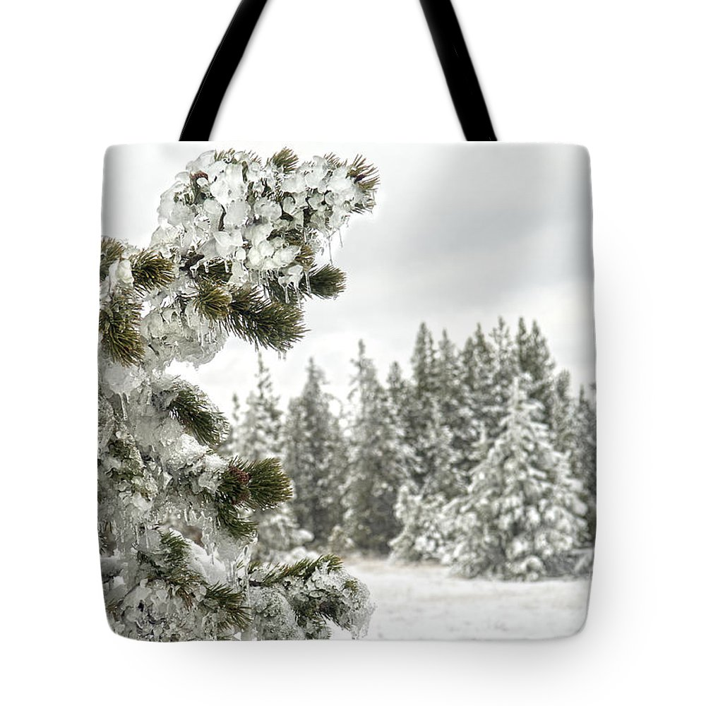 Pine Tree Tote Bag featuring the photograph Frozen Forest by Wildlife Fine Art
