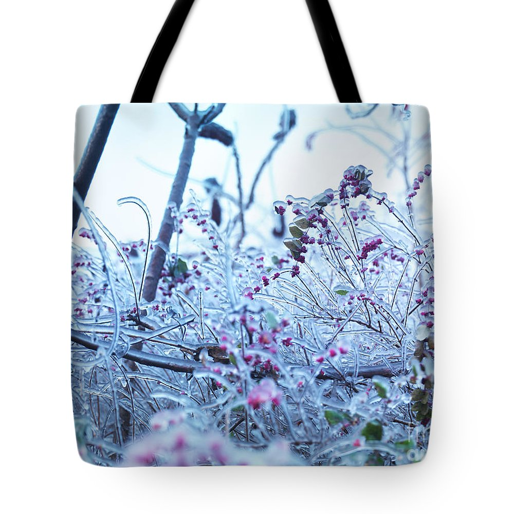 Nature Tote Bag featuring the photograph Frozen In Ice Nature by Oleksiy Maksymenko