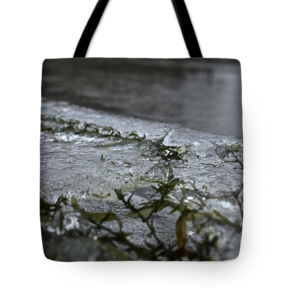 Outdoors Tote Bag featuring the photograph Frozen Milfoil by Susan Herber