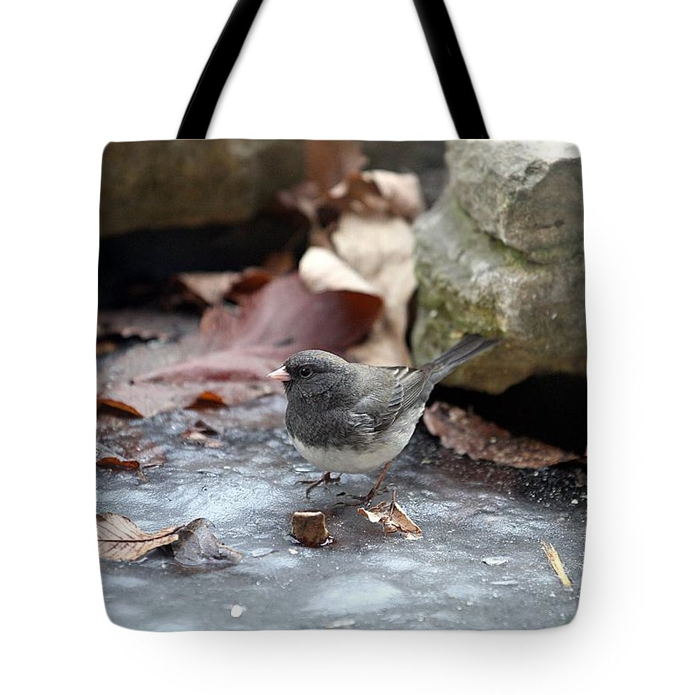 Dark Eyed Junco Tote Bag featuring the photograph Frozen Pond by Elizabeth Winter
