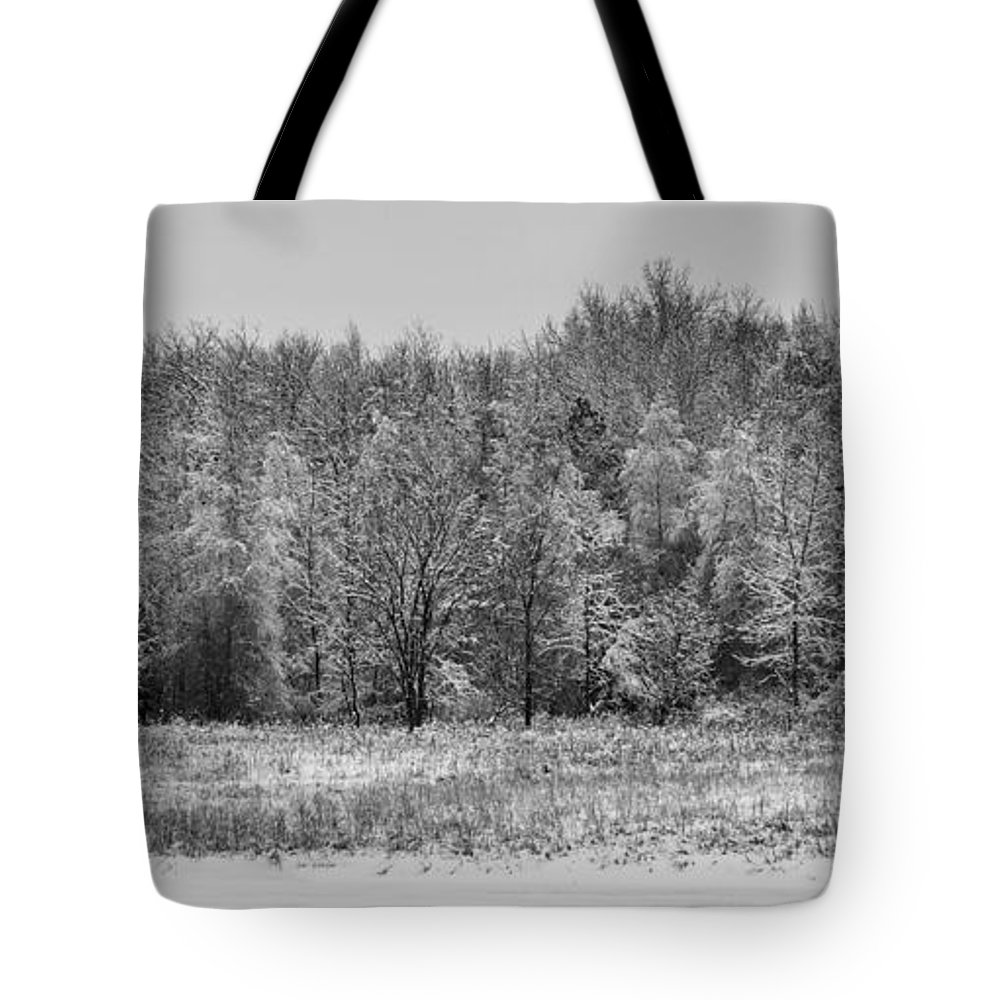 B&w Tote Bag featuring the photograph Frozen by Sebastian Musial