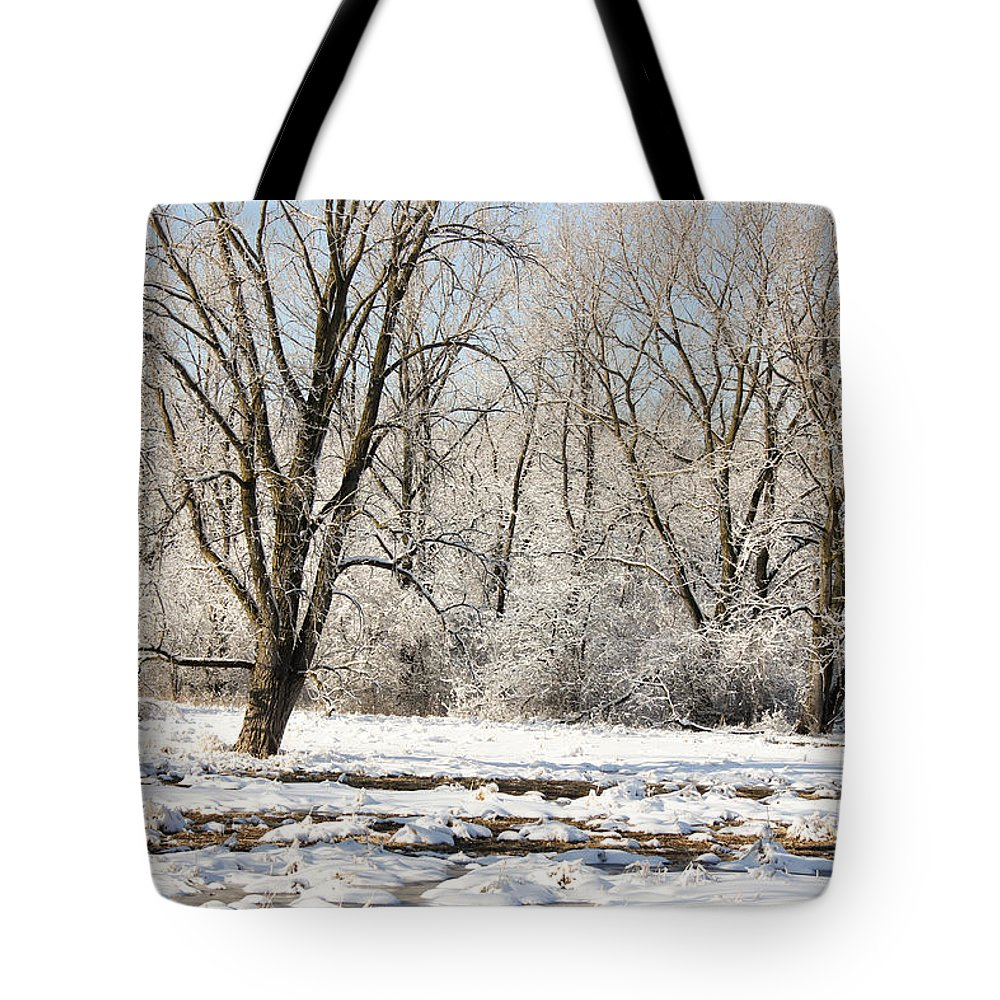 Winter Landscape Tote Bag featuring the photograph Frozen Swamp by Jackie Novak