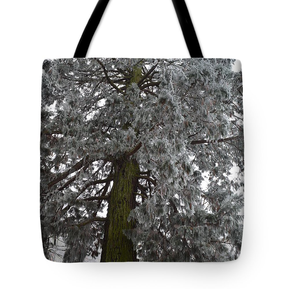 Nature Tote Bag featuring the photograph Frozen Tree 2 by Felicia Tica
