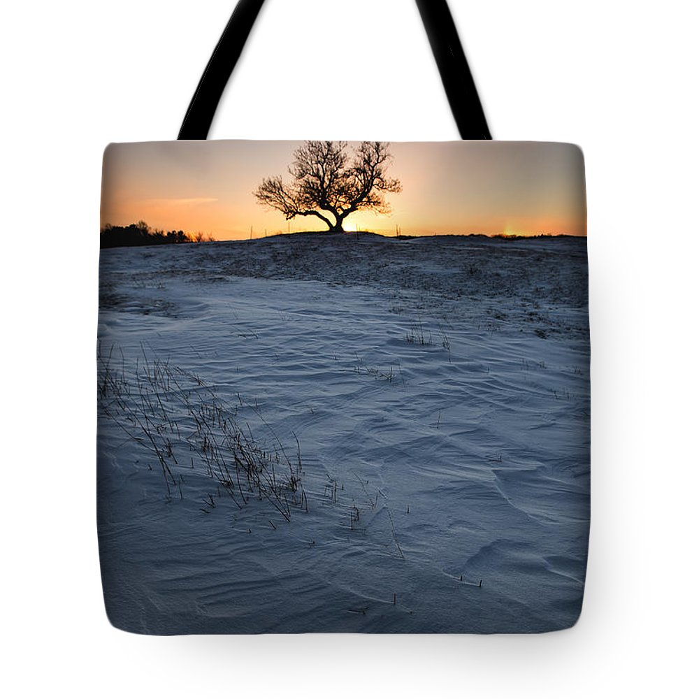 Lone Tree Tote Bag featuring the photograph Frozen Tree Of Wisdom by Aaron J Groen
