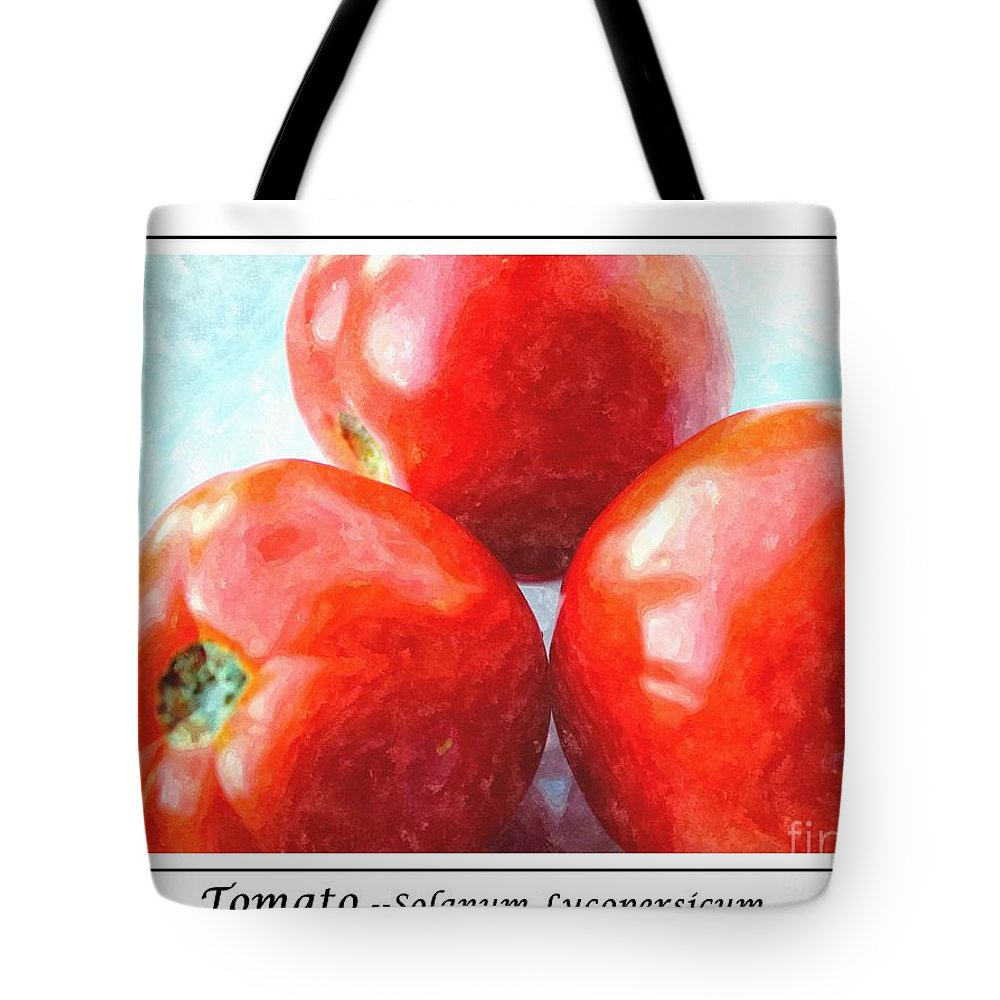 Fruit Of The Vine Tote Bag featuring the photograph Fruit Of The Vine - Tomato - Vegetable by Barbara Griffin