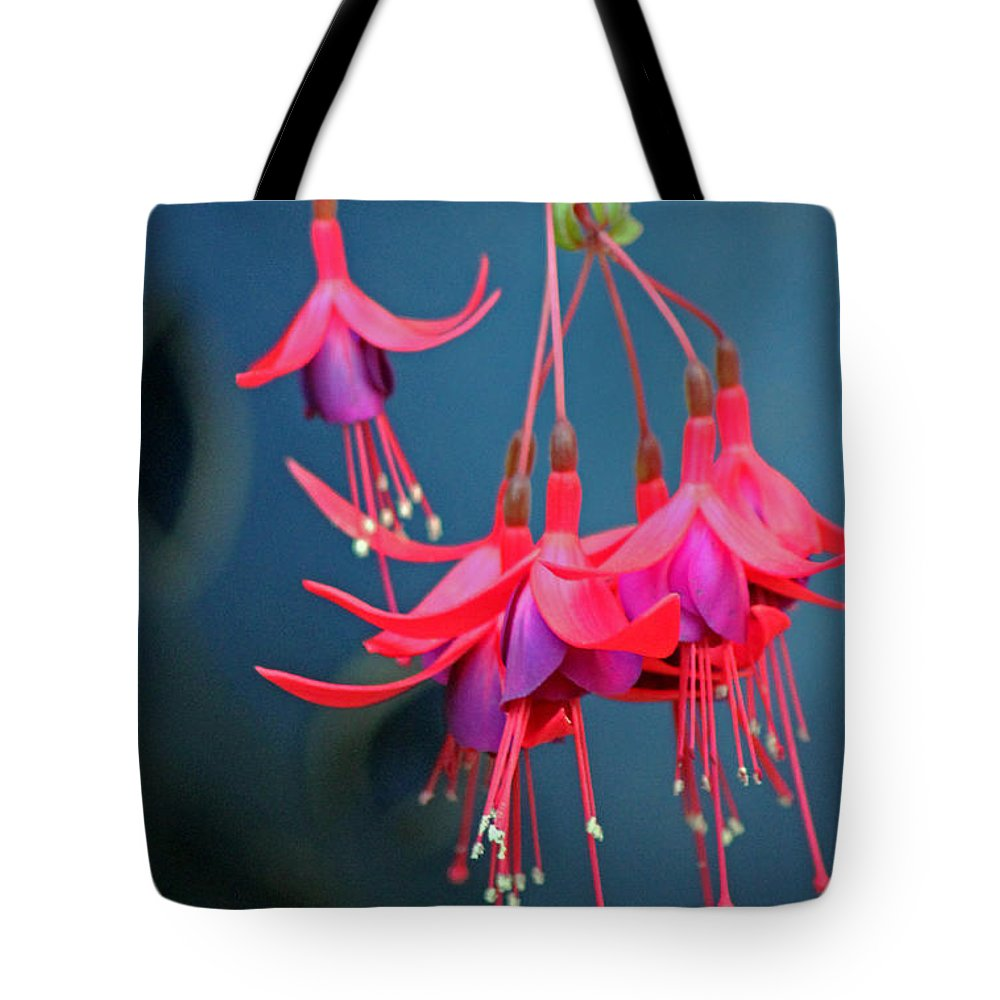 Fuchsia Tote Bag featuring the photograph Fuchsia by Tony Murtagh