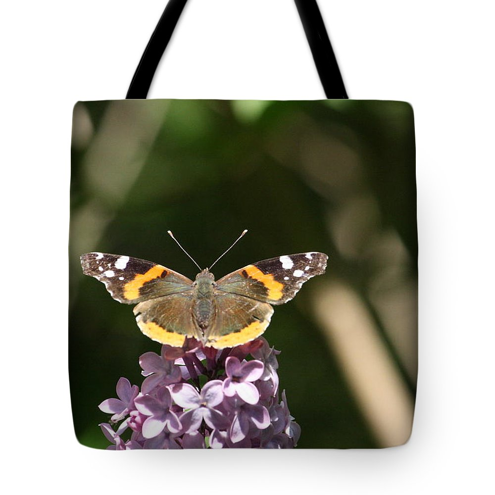 Butterfly Tote Bag featuring the photograph Fueling by Sue Chisholm