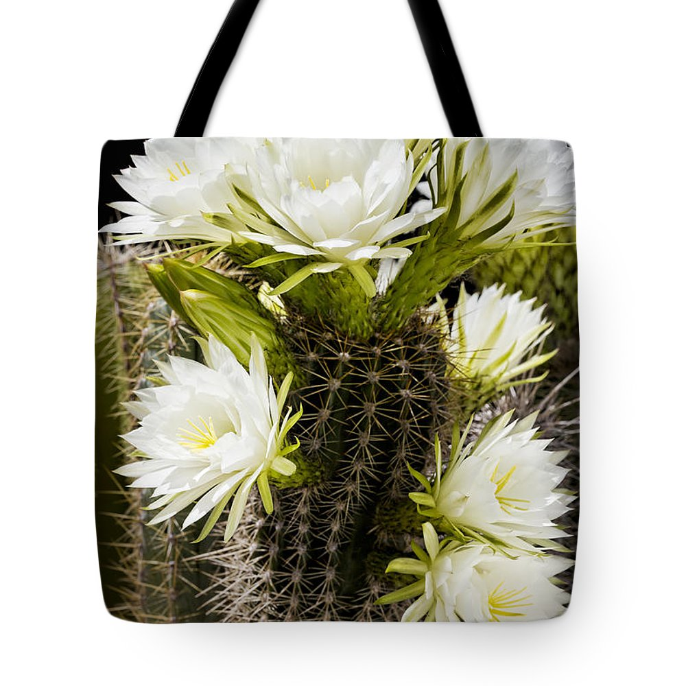 Full Bloom Tote Bag featuring the photograph Full Bloom by Kelley King