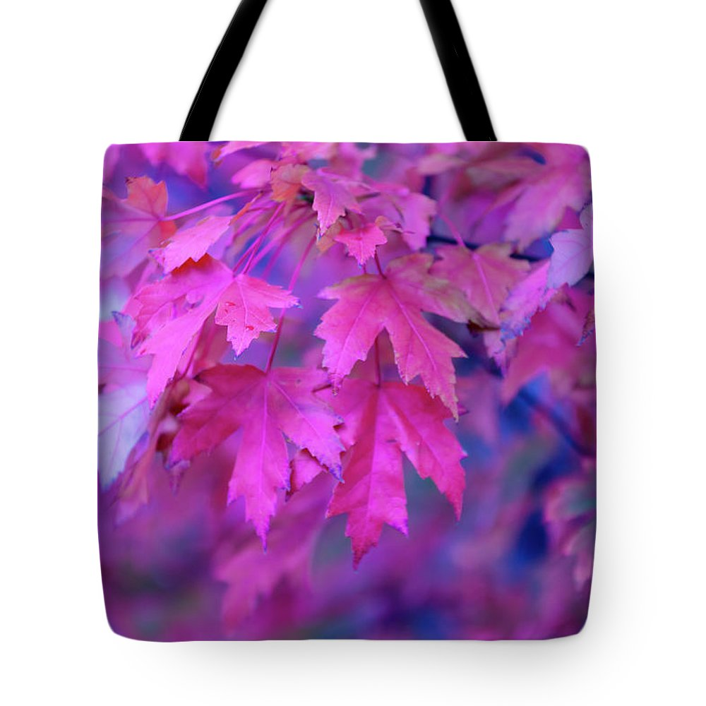 Tranquility Tote Bag featuring the photograph Full Frame Of Maple Leaves In Pink And by Noelia Ramon - Tellinglife
