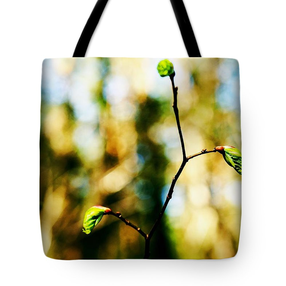 Spring Tote Bag featuring the photograph Full Of Life 6 by Yevgeni Kacnelson
