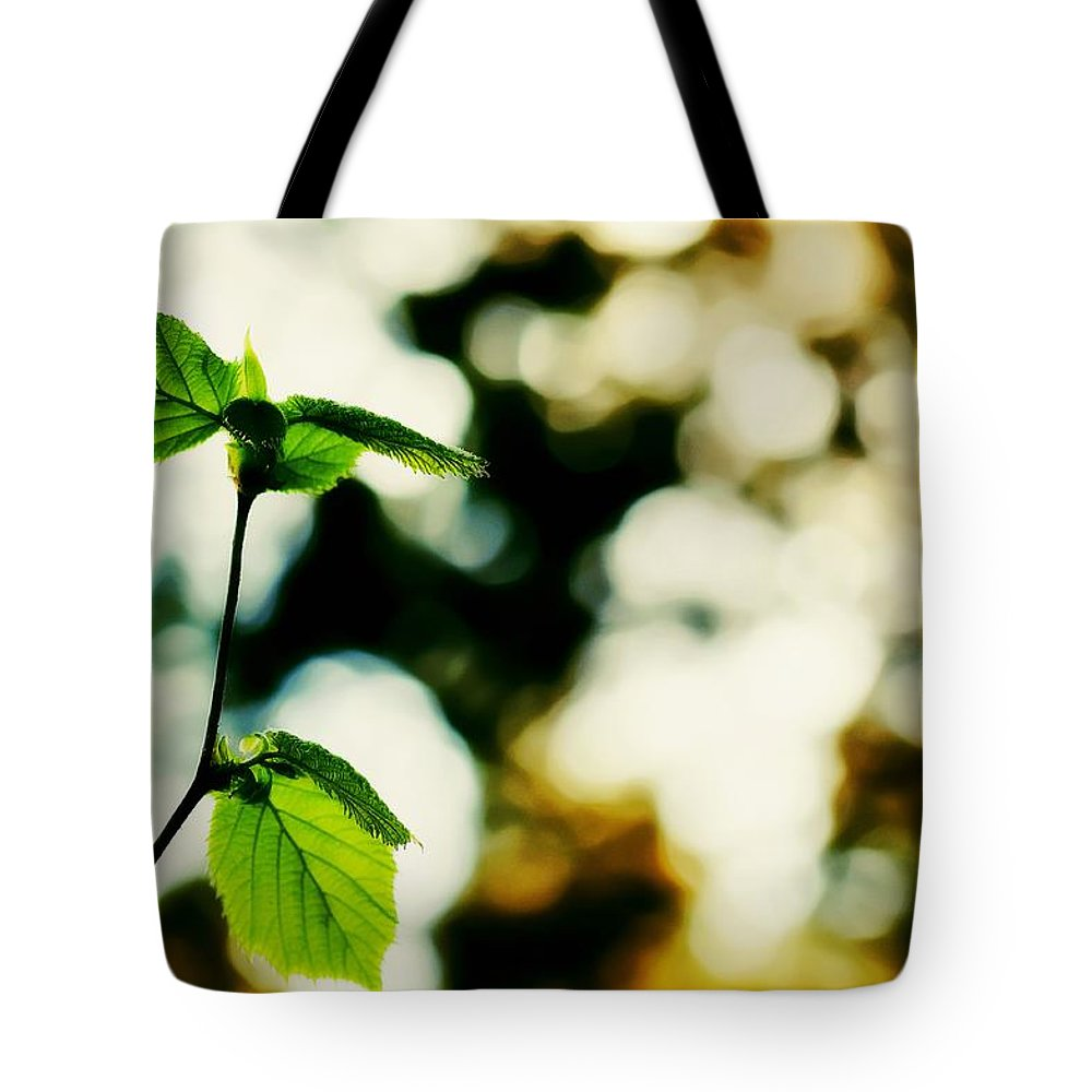 Spring Tote Bag featuring the photograph Full Of Life 9 by Yevgeni Kacnelson