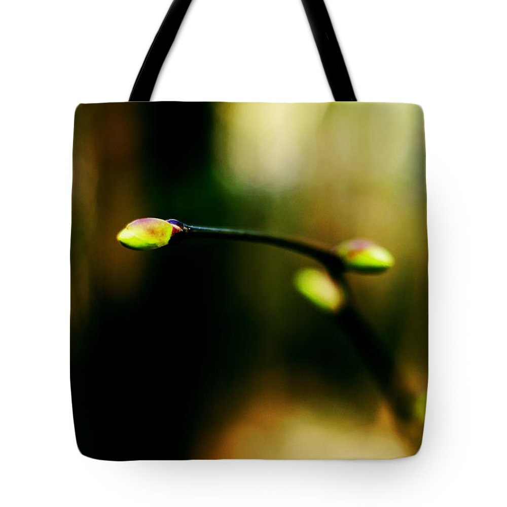 Spring Tote Bag featuring the photograph Full Of Life by Yevgeni Kacnelson