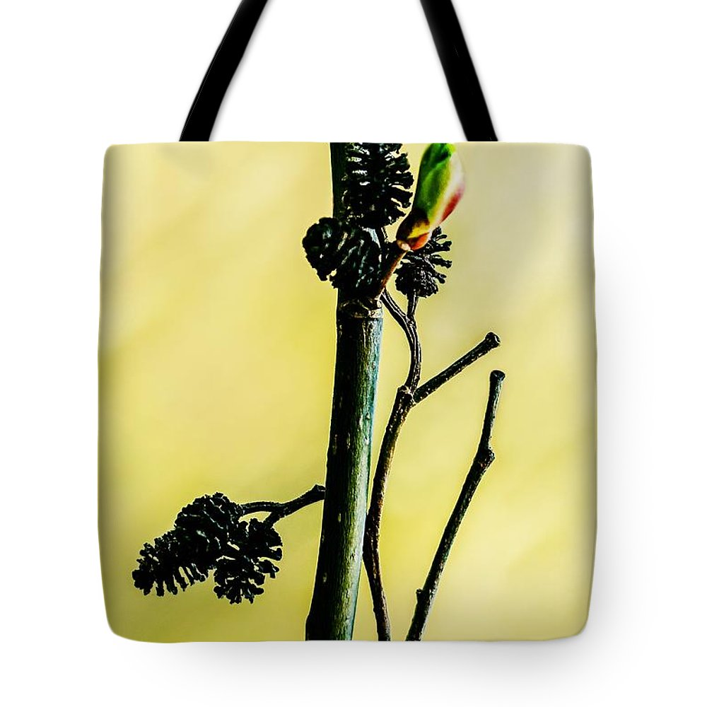 Spring Tote Bag featuring the photograph Full Of Live By Full Of Death by Yevgeni Kacnelson