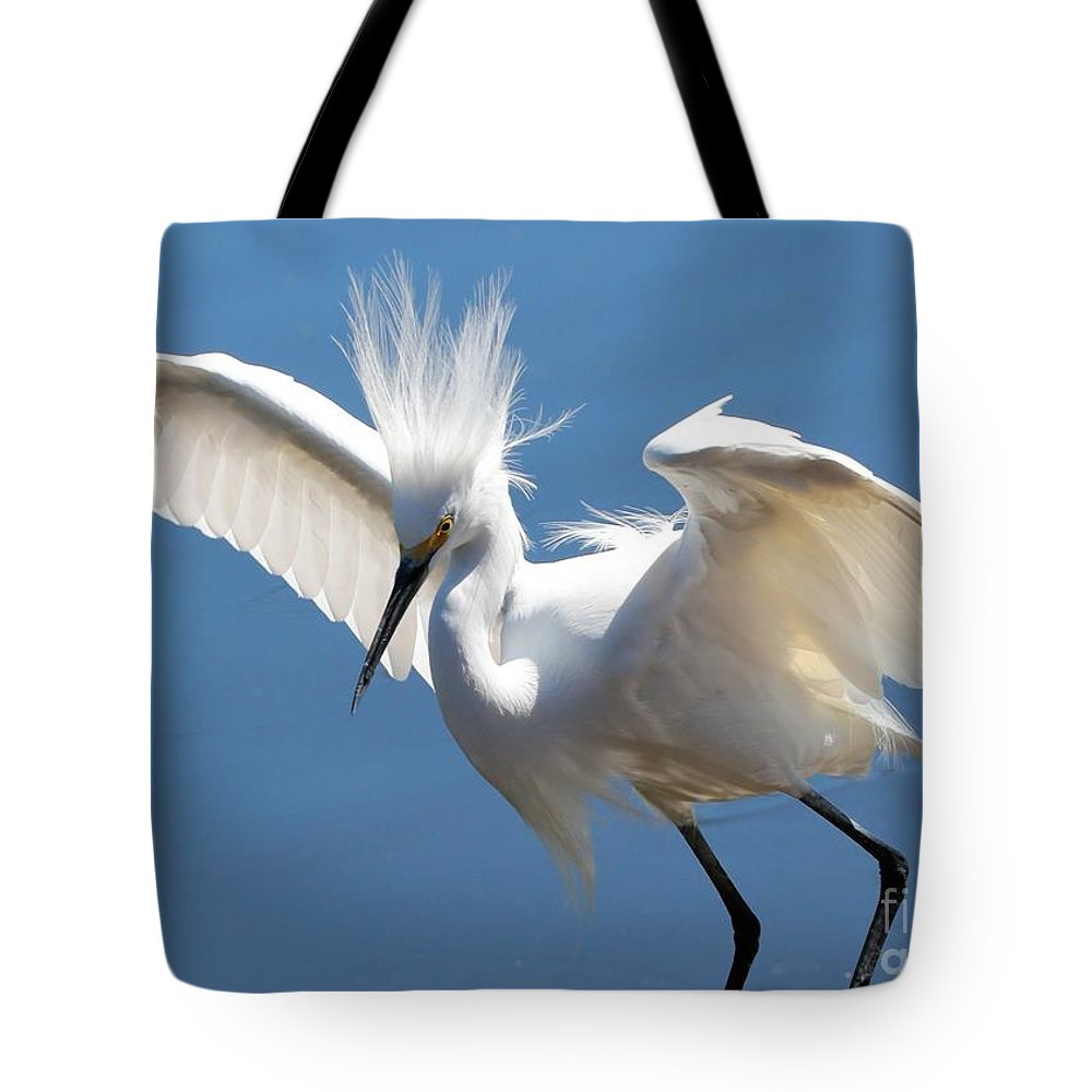 Egret Tote Bag featuring the photograph Fun Snowy Egret by Carol Groenen