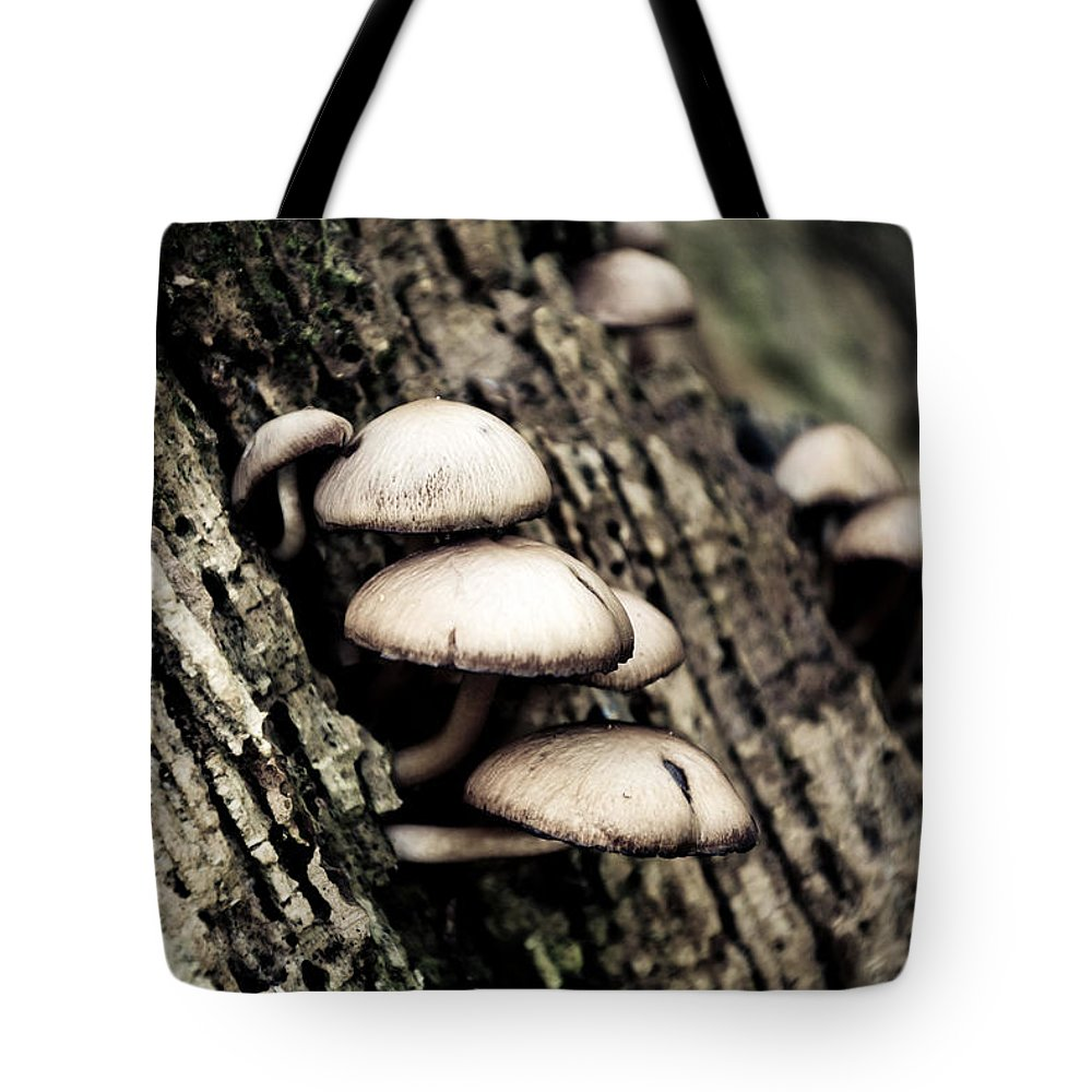 Fungi Tote Bag featuring the photograph Fungi by Lee Houston