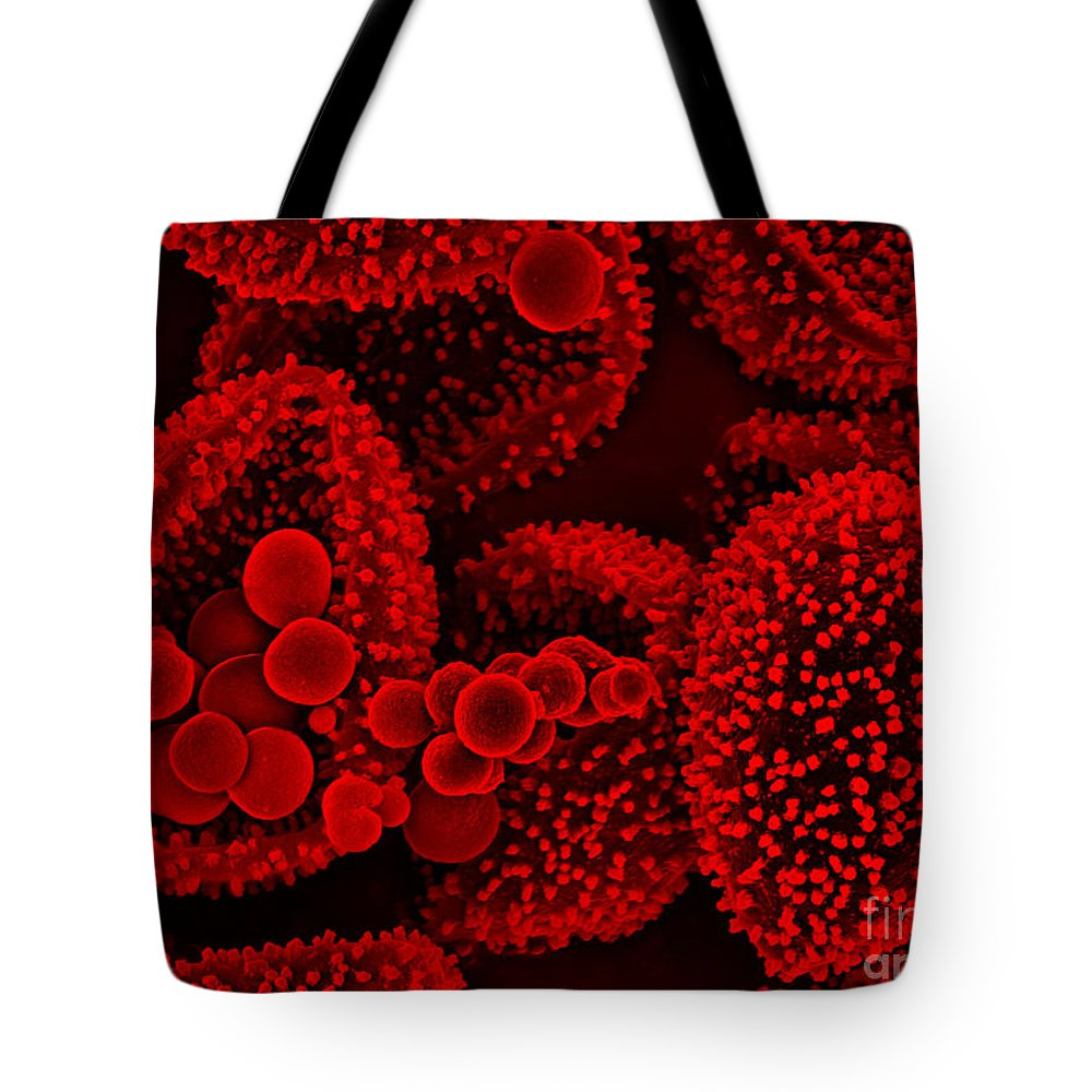 Science Tote Bag featuring the photograph Fungi Sem by Gary D Gaugler