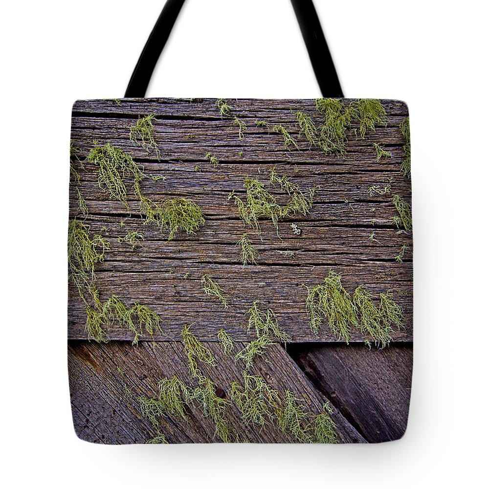 Fungus Tote Bag featuring the photograph Fungus Among Us by David Kehrli