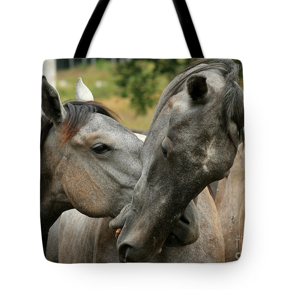 Horse Tote Bag featuring the photograph Funny Horses by Angel Ciesniarska