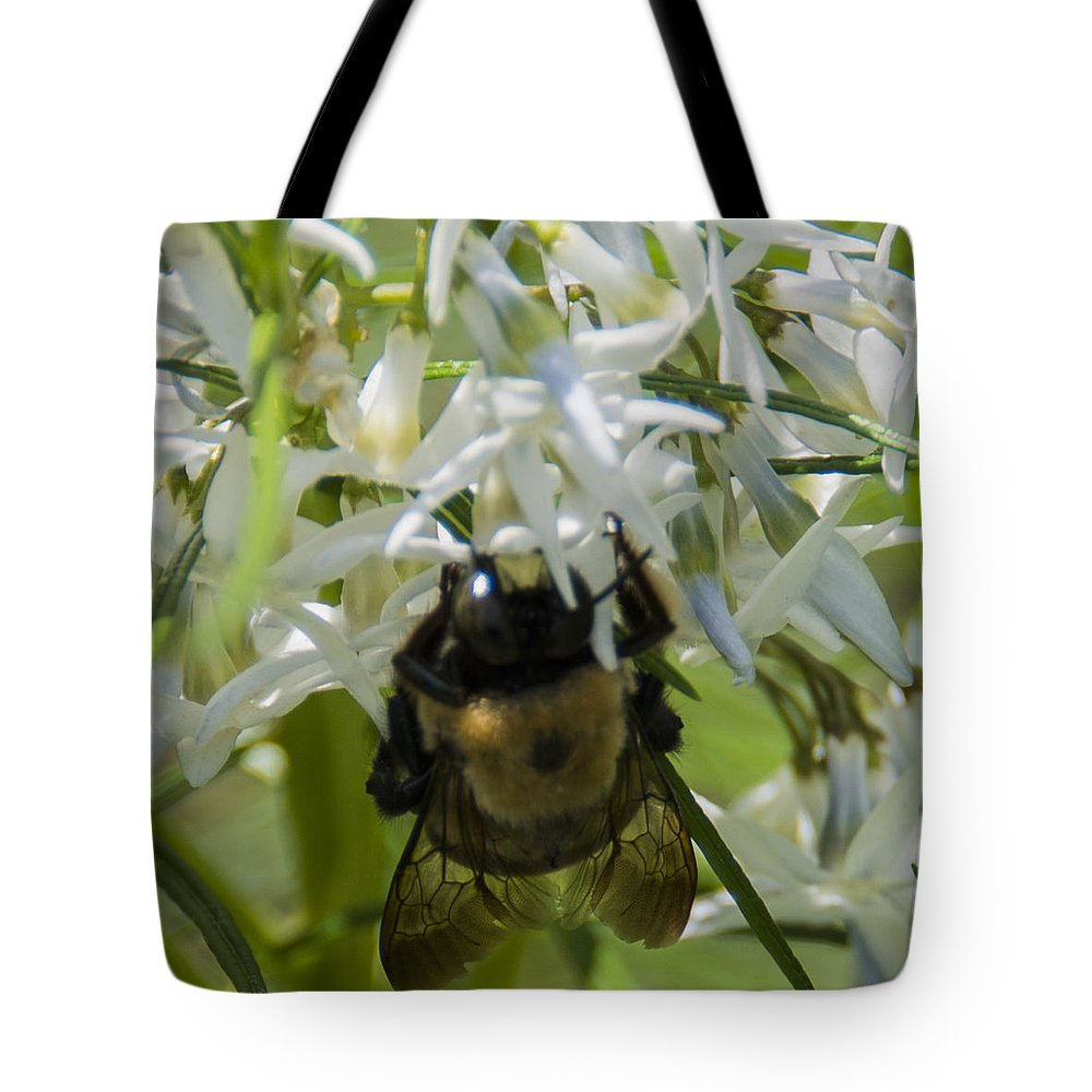 Bee Tote Bag featuring the photograph Furbee by Theodore Jones