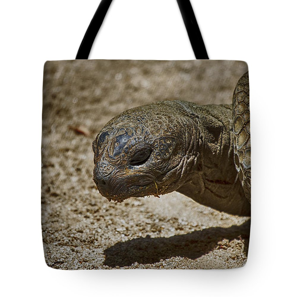 Galápagos Giant Tortoise Tote Bag featuring the photograph Galapagos Giant Tortoise by Douglas Barnard