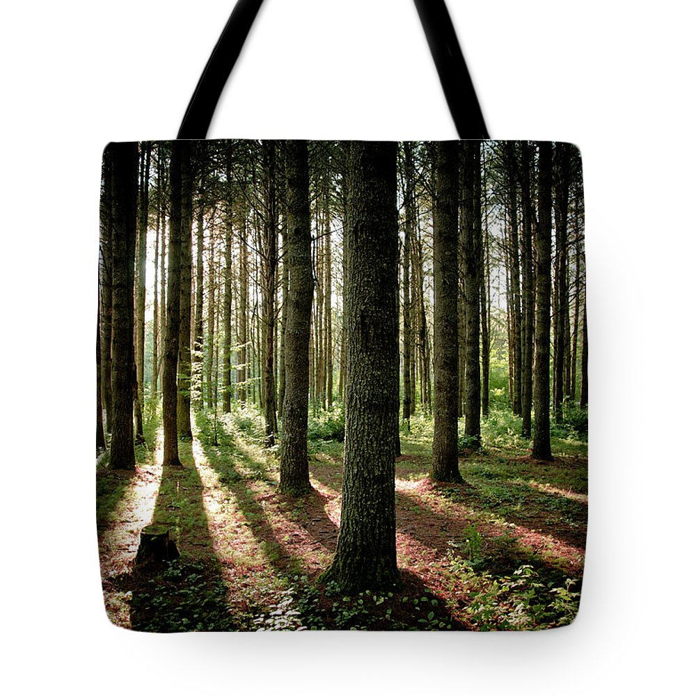 Tranquility Tote Bag featuring the photograph Galarneau by Guillaume Seguin
