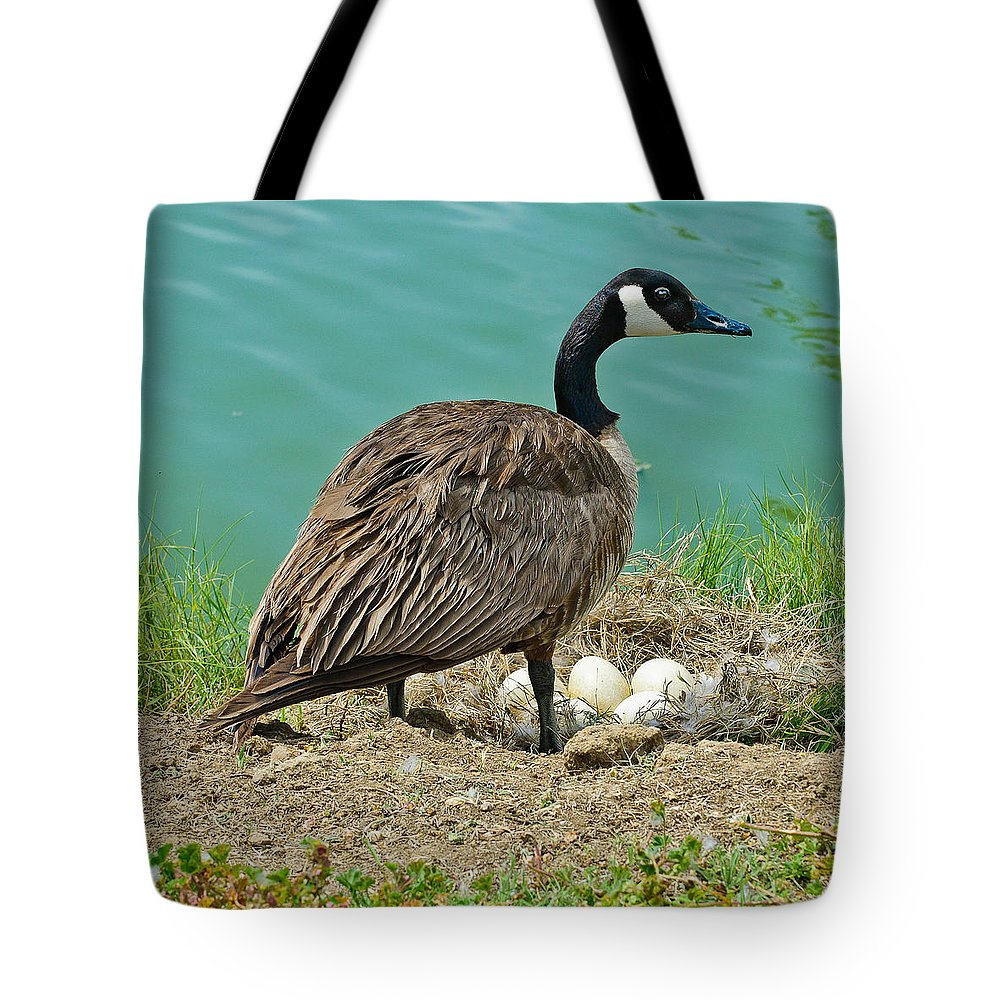 Bird Tote Bag featuring the photograph Gander Protecting The Nest by Bob and Nadine Johnston