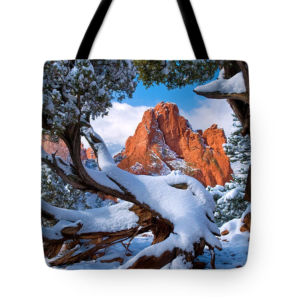 Pike National Forest Lifestyle Products