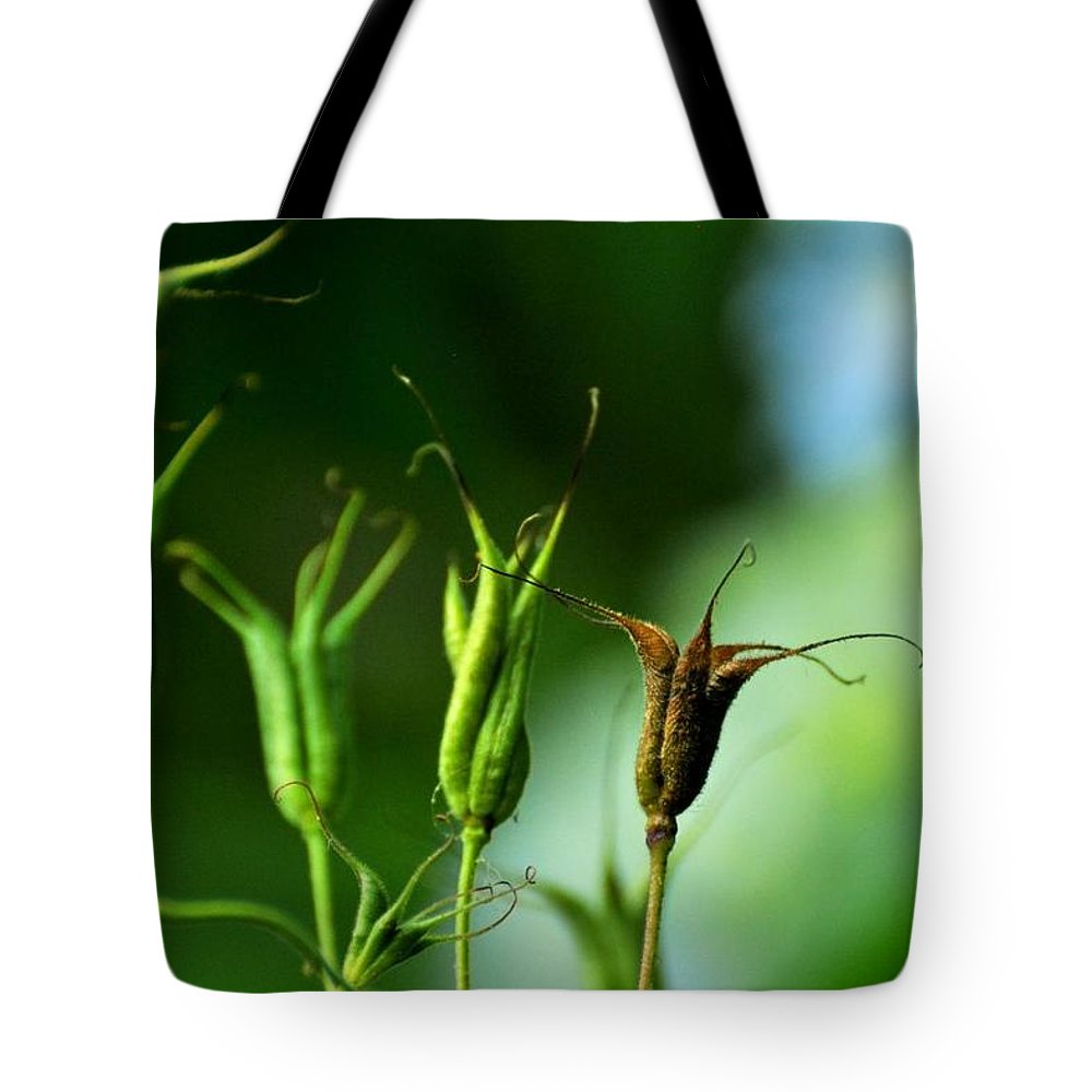 Aquilegia Tote Bag featuring the photograph Gather If You Wish. Then Let Them Go. by Rebecca Sherman