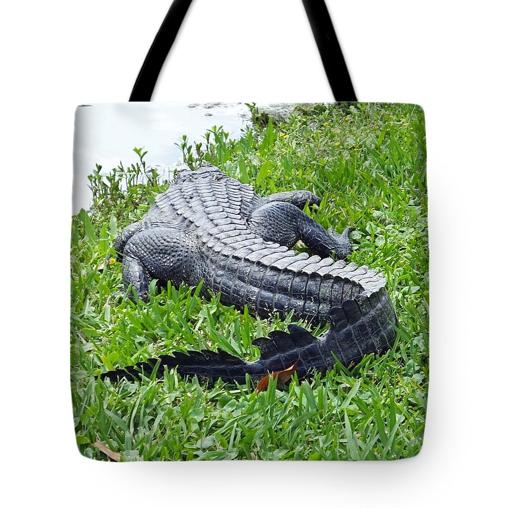 Avery Island Tote Bag featuring the photograph Gator In The Grass by Lizi Beard-Ward