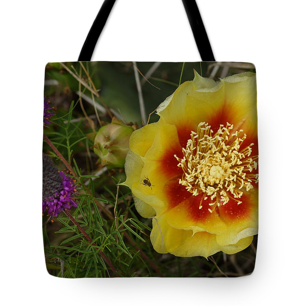 Gattinger's Prairie Clover And Prickly Pear Flower Tote Bag featuring the photograph Gattinger's Prairie Clover And Prickly Pear Flower by Daniel Reed