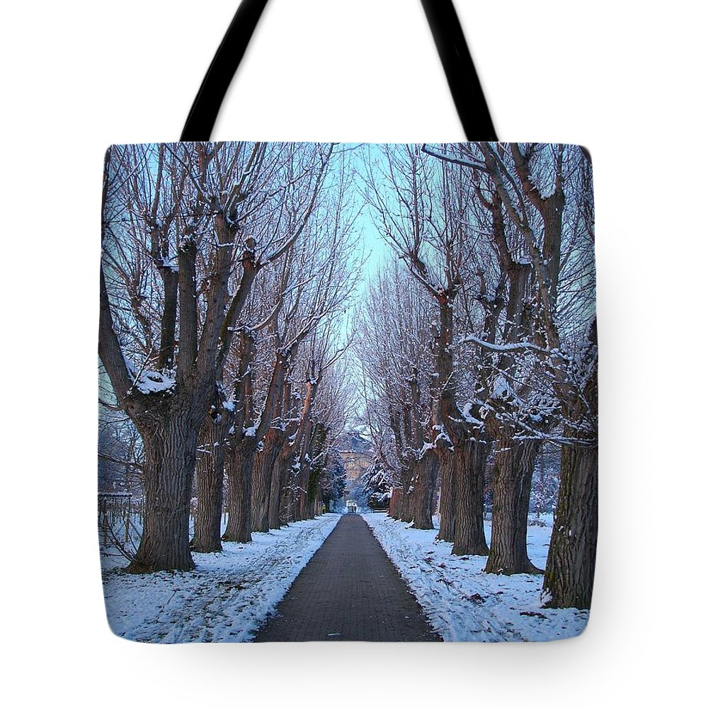Focal Tote Bag featuring the photograph Gauntlet Of Trees To Hohenheim Castle by Jeff at JSJ Photography