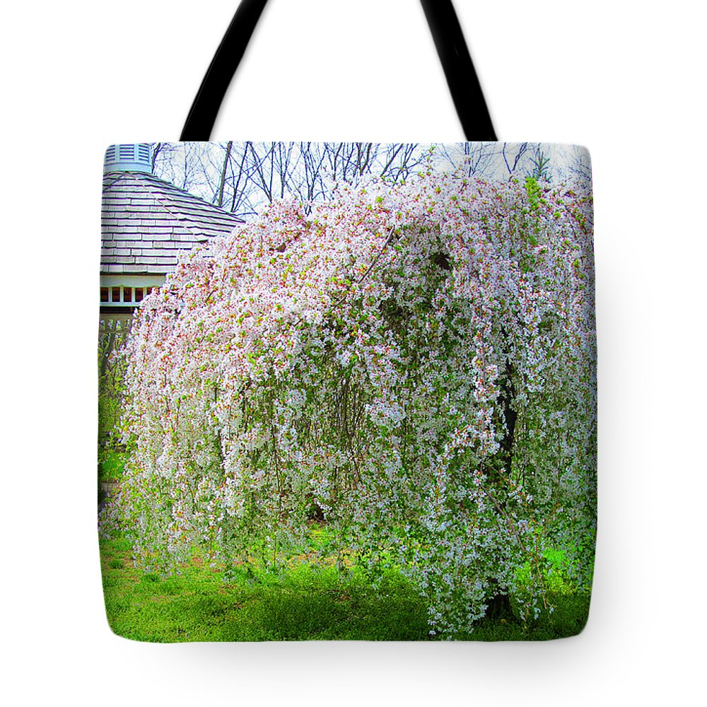 Park Tote Bag featuring the photograph Gazebo And Willow by Tina M Wenger