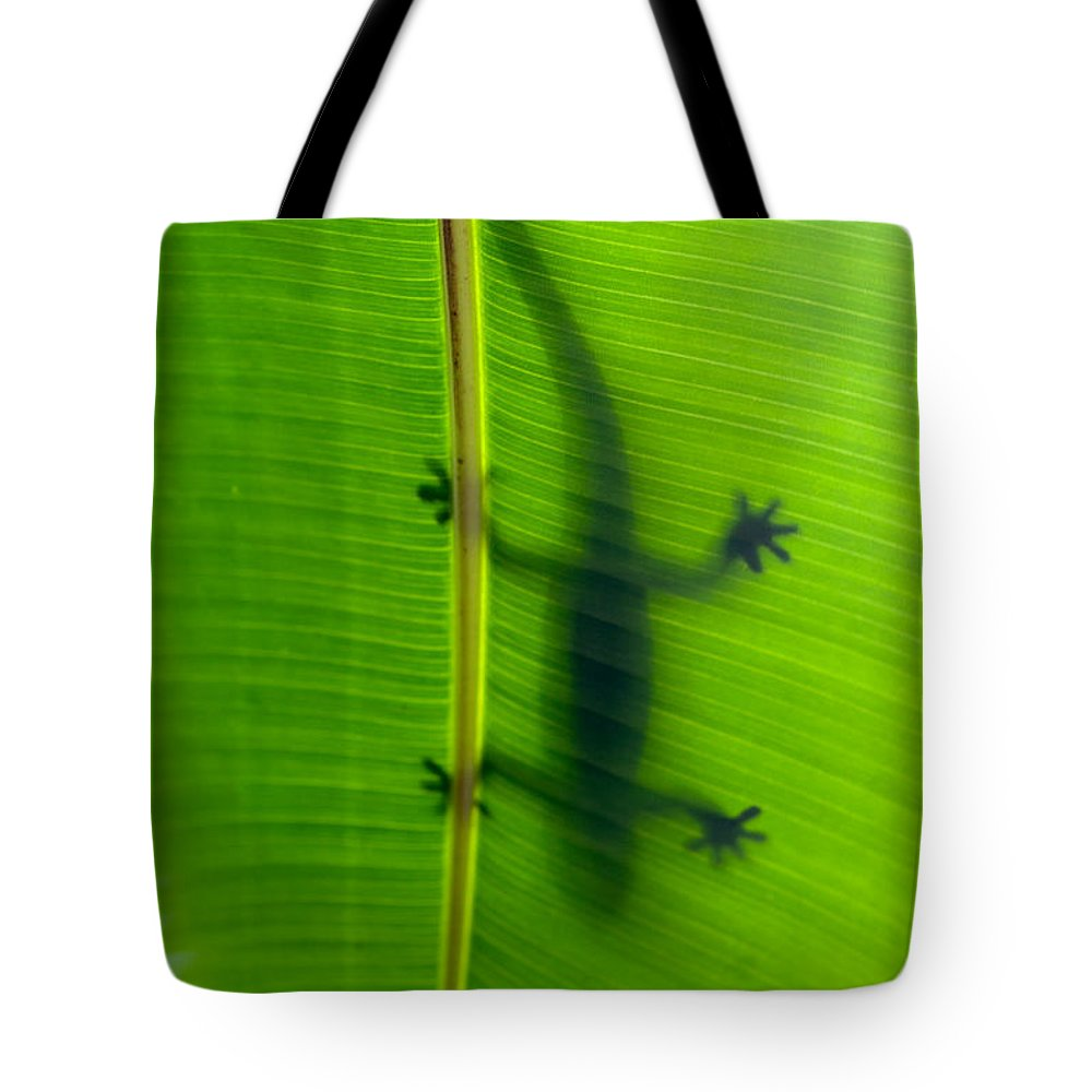 Hawaii Tote Bag featuring the photograph Gecko Silhouette by Dan McManus